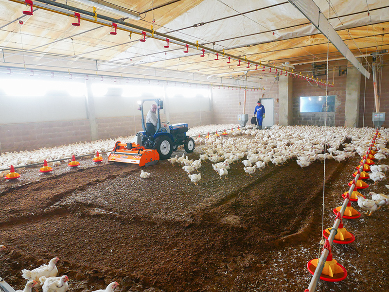 fräse-für-das-zerhacken-und-mischen-des-einstreu-von-geflügelfarmen-und-kühställe-pavo-160